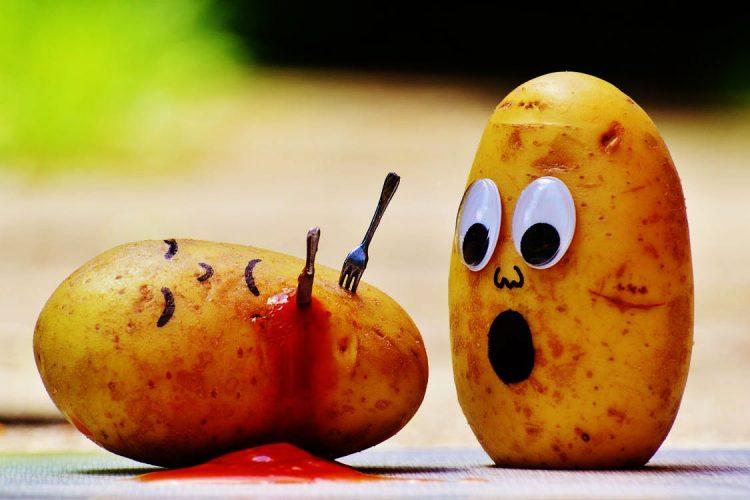 erreurs alimentaires